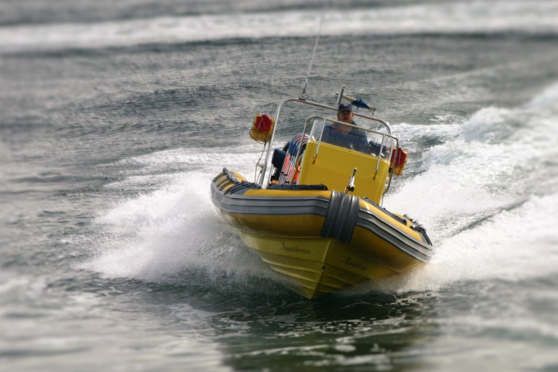 High Speed Boat Charter Cape Town