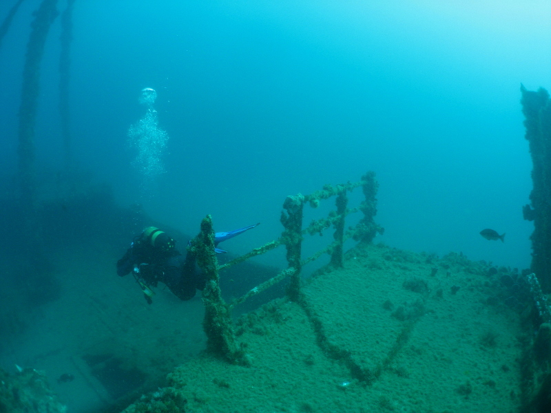 Scuba diving wrecks in Cape Town