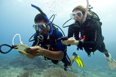 Underwater navigation training on the PADI Advanced Open Water Diver course